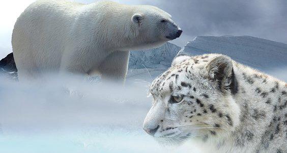Klimaziele werden zur Farce – Bisher noch keine Einigung über Messbeginn!